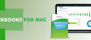 QuickBooks File from Mac to Windows