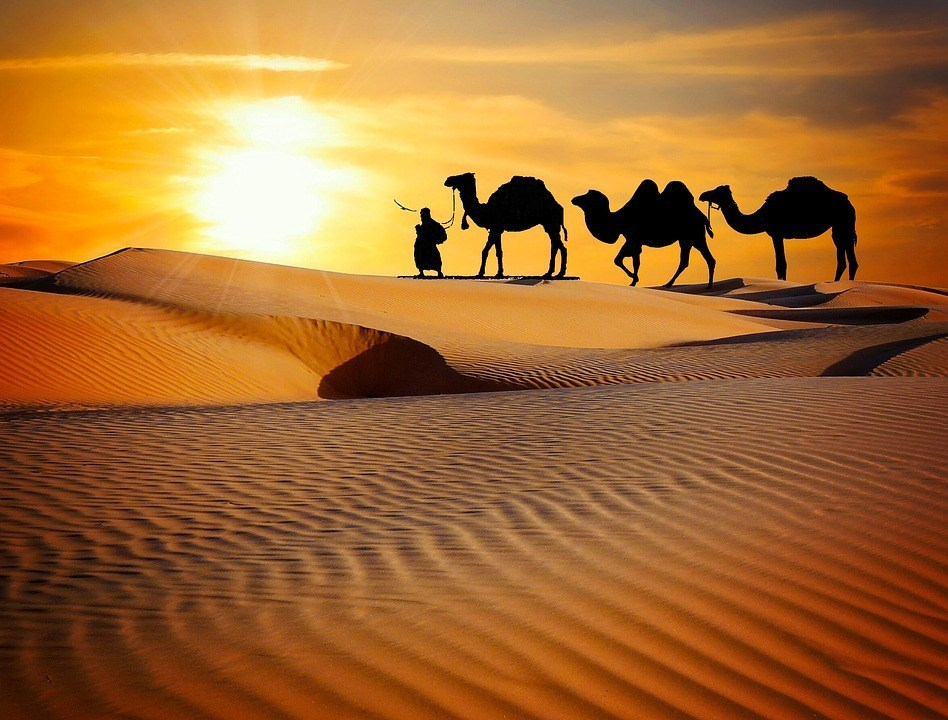 place to visit in rajasthan