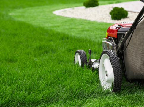 Benefits of Lawn Services