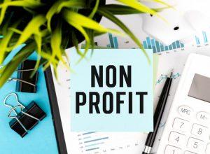 Non-Profit Employee